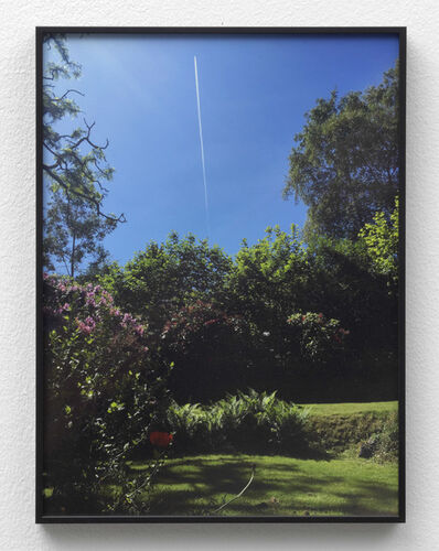 Juliette Blightman, '1st June - Garden, Farnham (with Plane)', 2018