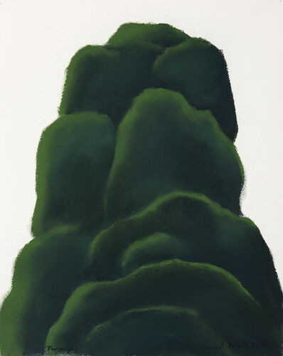 David Nash, 'Twmp', 2014