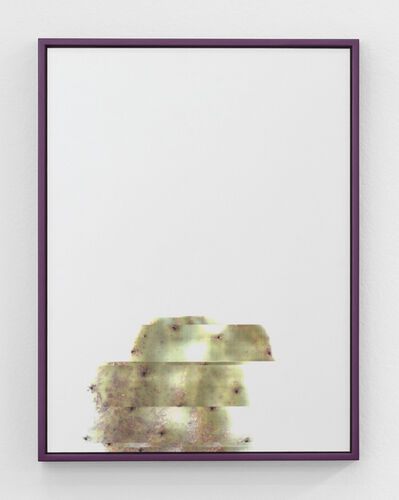 Adrien Missika, 'Cactus Frottage F', 2012