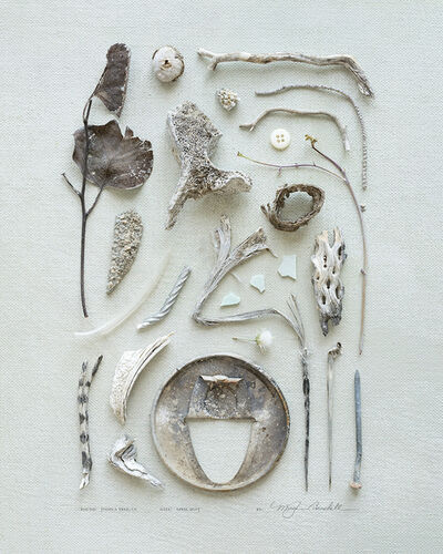 Meghan Crandall, 'Bones', 2015