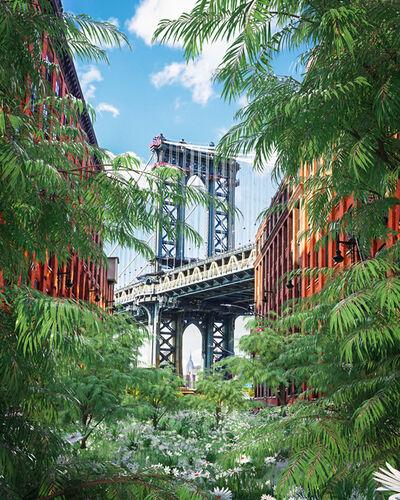 Timo Helgert, 'The Return of Nature New York', 2020