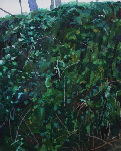 Claire Sherman, 'Moss and Ferns', N/A