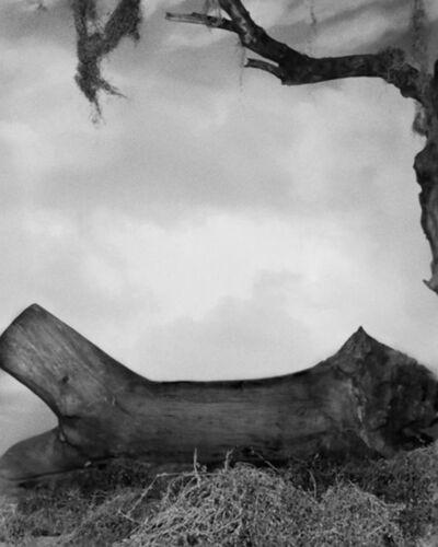 Josh Azzarella, 'Untitled #112', 2010