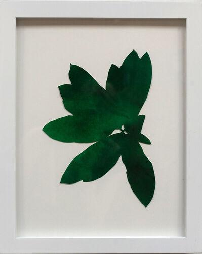 Hannah Cole, 'Dark Green Weed', 2018