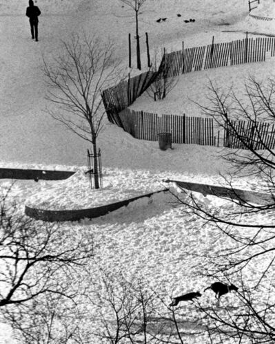 André Kertész, 'New York (Two Dogs Running in the Snow)'
