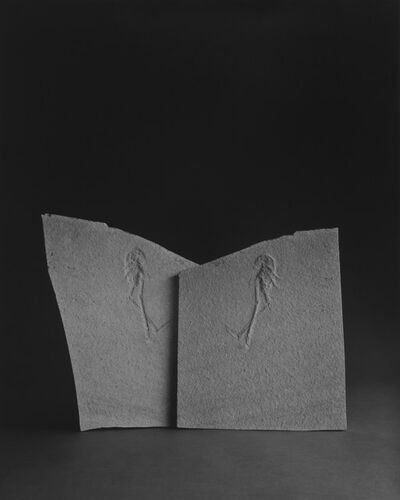 Hiroshi Sugimoto, 'Limited Edition of Cahiers d'Art 1, 2014 - English Edition', 2014
