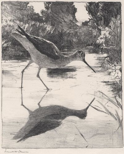 Frank Weston Benson, 'Yellowlegs.', 1931
