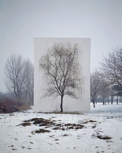 Myoung Ho Lee, 'Tree #3', 2006