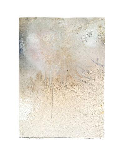 Margaux Crump, 'Blushing Bruising VII', 2016
