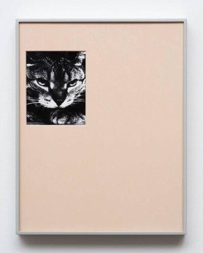 Gideon Barnett, 'Untitled', 2018