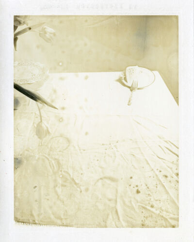 Laura Letinsky, 'Untitled #43, from Time's Assignation', 2002