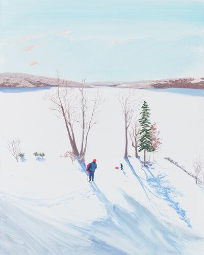 Sebastian Blanck, 'Over Looking the Lake', 2017
