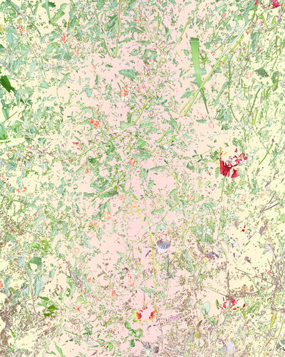 Aaron ROTHMAN, 'Wildflowers (PVGM3)', 2015