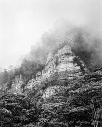Miguel Winograd, 'Bosque de niebla Chicaque, Silver Gelatin Print', 2021