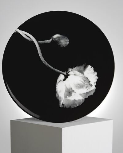 Robert Mapplethorpe, 'Poppy', ca. 2019
