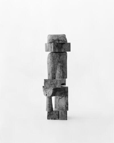 Marco Maria Zanin, 'Sintomo II', 2017