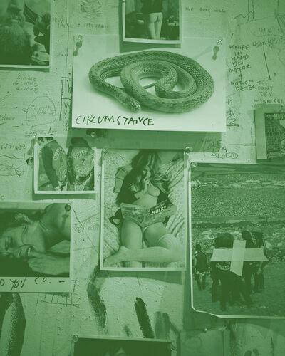 John Copeland, 'Sixteen Years on Johnson Avenue #2', 2014