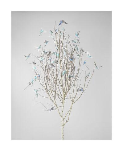 Leila Jeffreys, 'Blue Blossoms 2', 2019