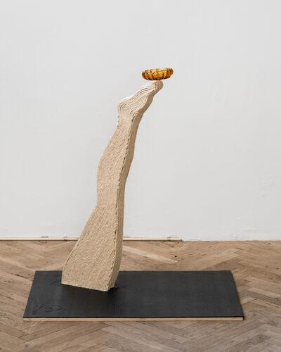 """Nathaniel Cary, '""""Social Climbing"""" (leg)', 2019"""