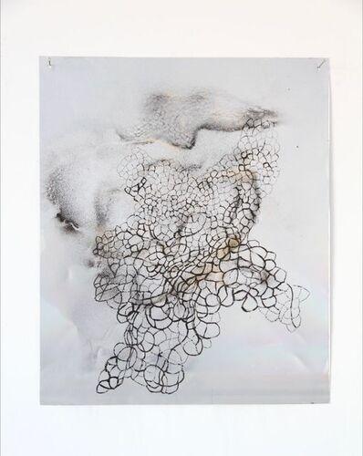 Myriam Holme, 'zappe', 2018
