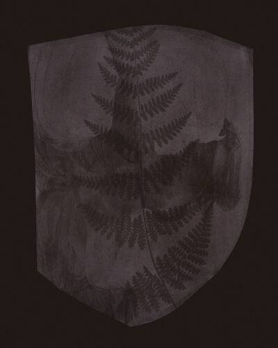 Hiroshi Sugimoto, 'Buckler Fern, March 6, 1839 or earlier', 2008