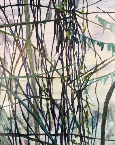 Claire Sherman, 'Vines', 2019