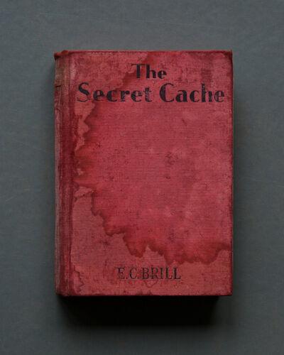 Mary Ellen Bartley, 'The Secret Cache', 2017