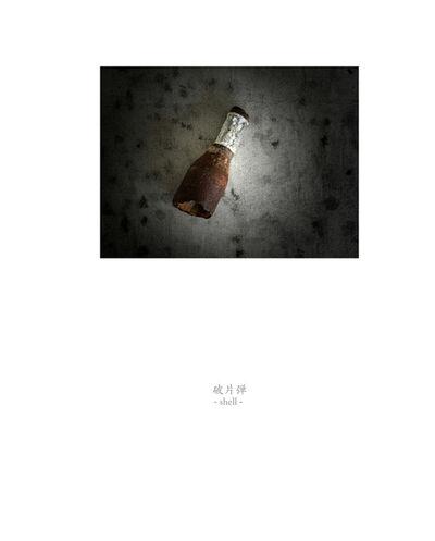 Osamu James Nakagawa, 'shell', 2001-2009