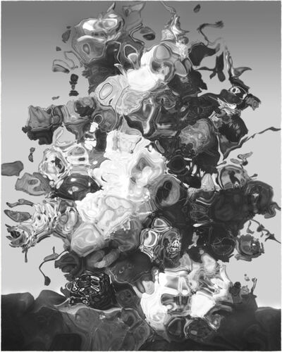 Christoph Steinmeyer, 'Fleurs du Dystophie', 2013