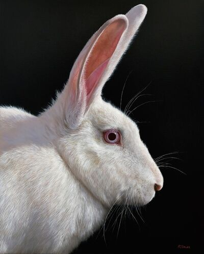 Alexandra Klimas, 'Snowy the Rabbit'