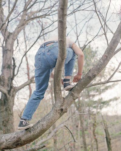 Iris Wu 吴靖昕, ' Untitled(on the tree)', ca. 2020