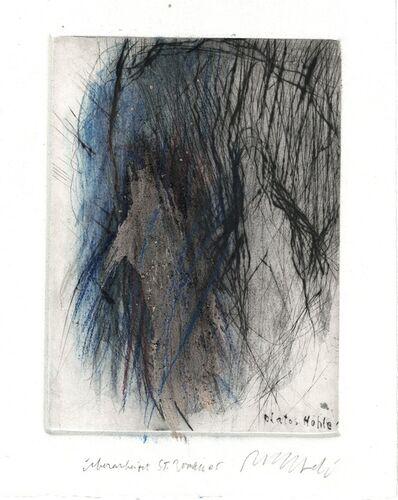 Rolf Iseli, 'Platos Hohle', 2005
