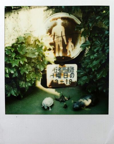 """Nobuyoshi Araki, 'Untitled, 1999-2001 (""""Pola Eros,"""" number plate and plastic animals)'"""