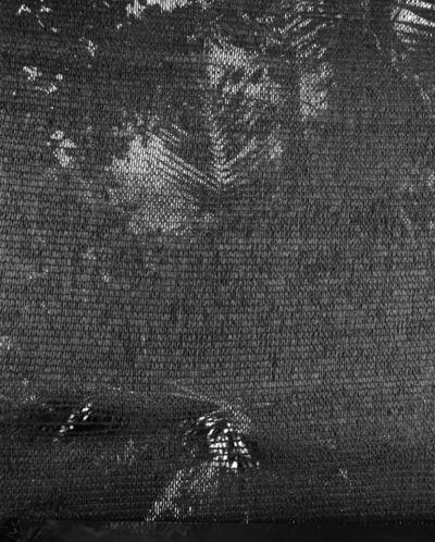 Awoiska van der Molen, '#450-9', 2016