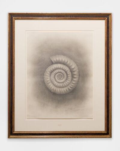 Mark Ryden, 'Ammonite', 2015
