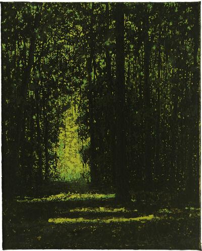 Wulf Winckelmann, 'Lichtung (#1155) ', 2015