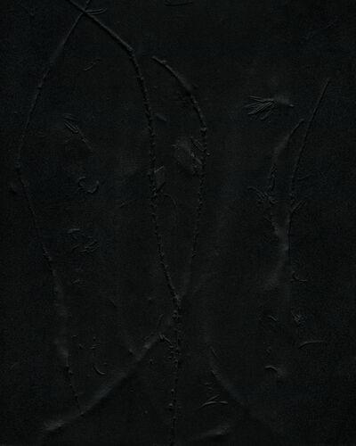 Dawn Roe, 'Yew Remnants on Film (Imprint)', 2020