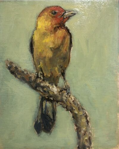 Ed Musante, 'Western Tanager I', 2021