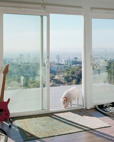 Alec Soth, 'Banksy. Hollywood Hills, CA. 2017.', 2021
