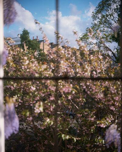 Alec Soth, 'Susanne's View. London.', 2018