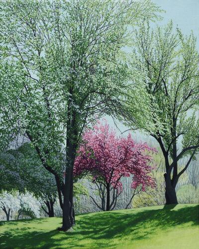 Anita Mazzucca, 'Spring in Long Street Park', 2016