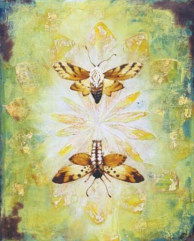 Christopher Reilly, 'Moth Mirror'