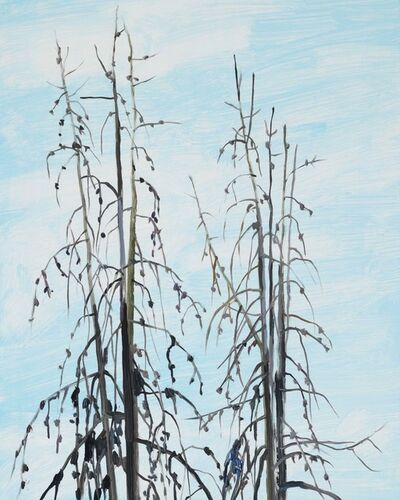 Claire Sherman, 'Trees', 2019