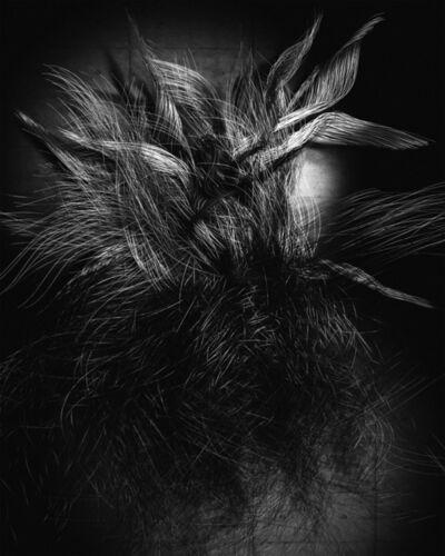 Tim Berresheim, 'Violett (Haar (Foto))  I', 2007