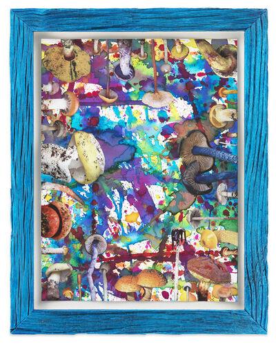 Douglas Melini, 'Untitled (SHRooMS blue frame)', 2020