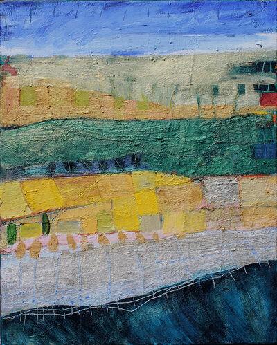 Allison Collins, 'Land Patterns', 2019