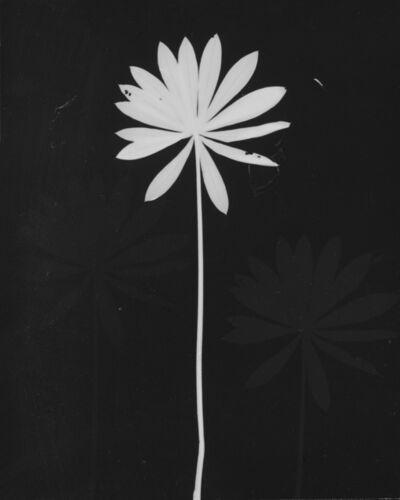 Anwar Jalal Shemza, 'Untitled', ca. 1980