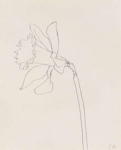 Ellsworth Kelly, 'Daffodil', 1980