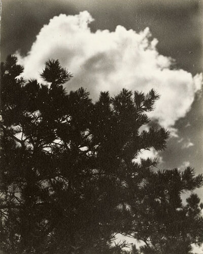 Dorothy Norman, 'Cloud Formations and Tree Branches', 1936c/1936c