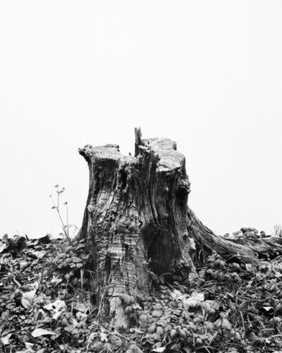 Daichi Koda, '(back)ground 07', 2019